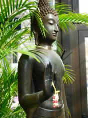 Buddha WG